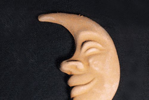 Mascherina luna [154]